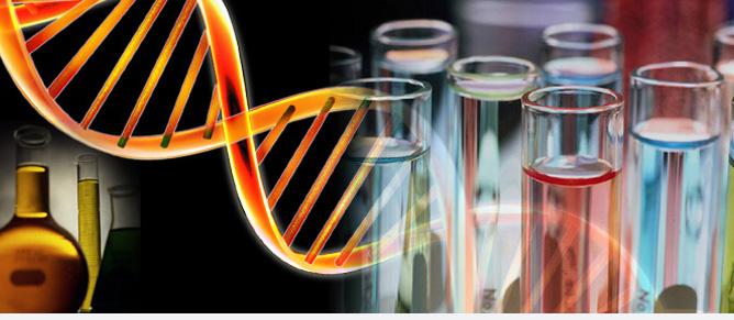 Funkcionālā genomika